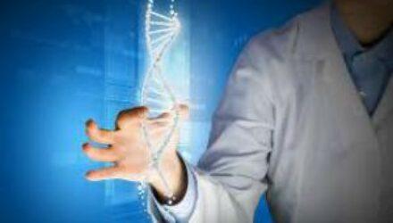 Японские ученые признали генетически отредактированные продукты безопасными