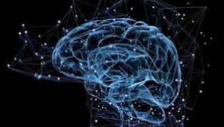 Нейробиологи выяснили возраст настоящего взросления людей