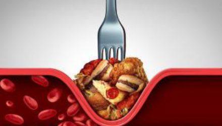 Жир вокруг кровеносных сосудов полезен