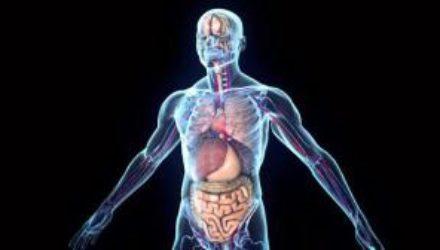 Врачи назвали 7 признаков воспаления в организме