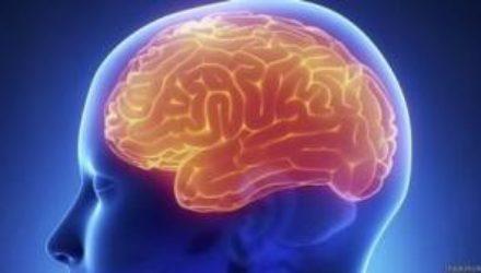 Ученые нашли новый способ обнаружения быстрорастущей формы рака мозга