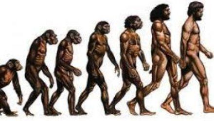 Мы мутируем: ученые обнаружили признаки ускоренного эволюционирования людей