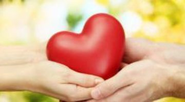 Какие микроэлементы помогут сохранить здоровье сердца