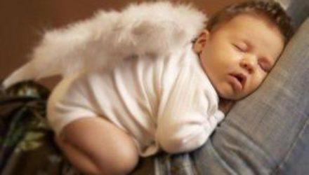 Домашние питомцы в спальне вредят полноценному сну