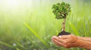 12 дельных советов для развития своего потенциала
