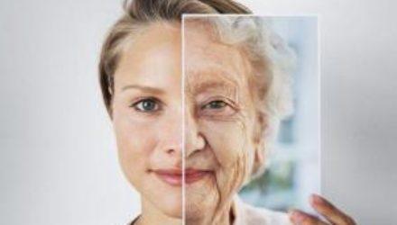 Учёные: процесс старения запускается в момент зачатия