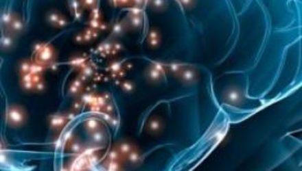 Природа и механизм действия гормонов. Часть 2