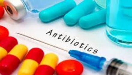 Нетоксичный антибиотик нового поколения изобрели российские и корейские ученые