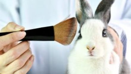 На Гавайях запретят тестирование косметики на животных